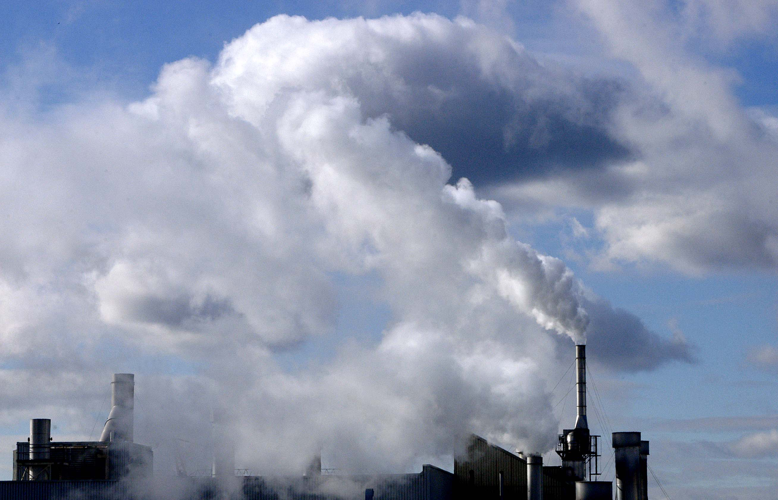 Harvard Study adds further evidence linking pollution to autism