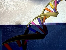 Genetic test for autism is questioned by new study