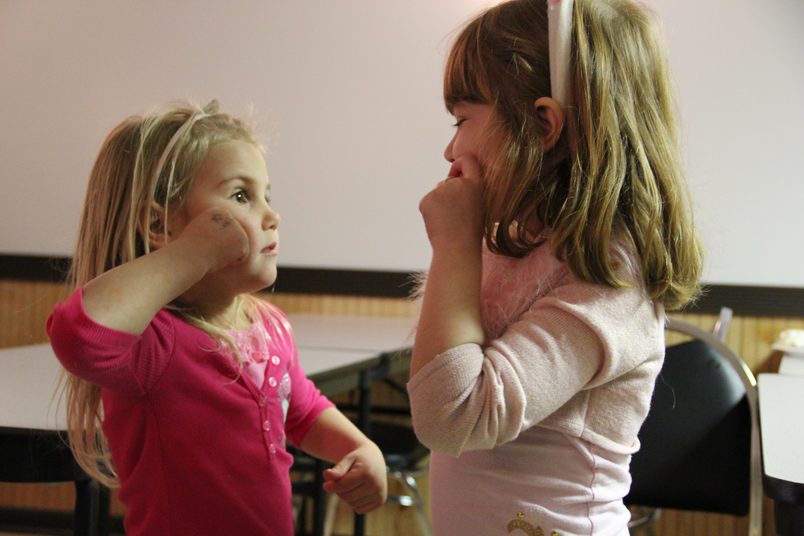 Sign Language and Individuals with ASD