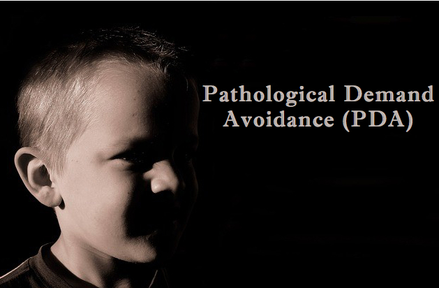 Living with Pathological Demand Avoidance (PDA), One Mother's Story