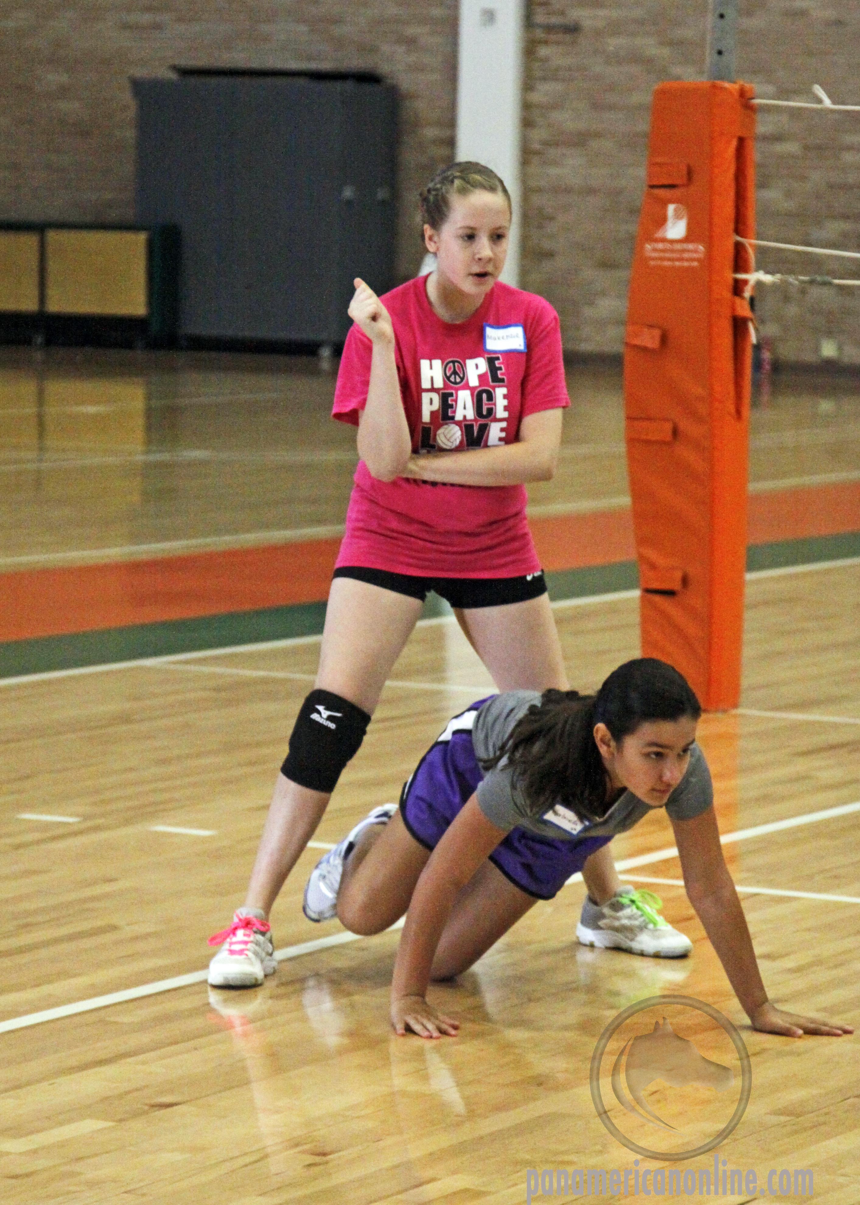 Virginia high school volleyball team raise money for Autism Speaks