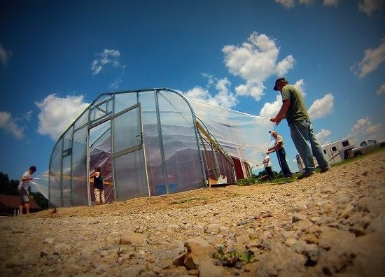 Aquaponic, Green Bridge Growers support young people on the autistic spectrum