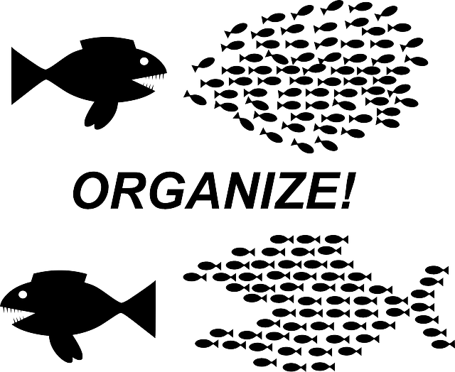 Organizing for Autism – Change your space to increase functional communication