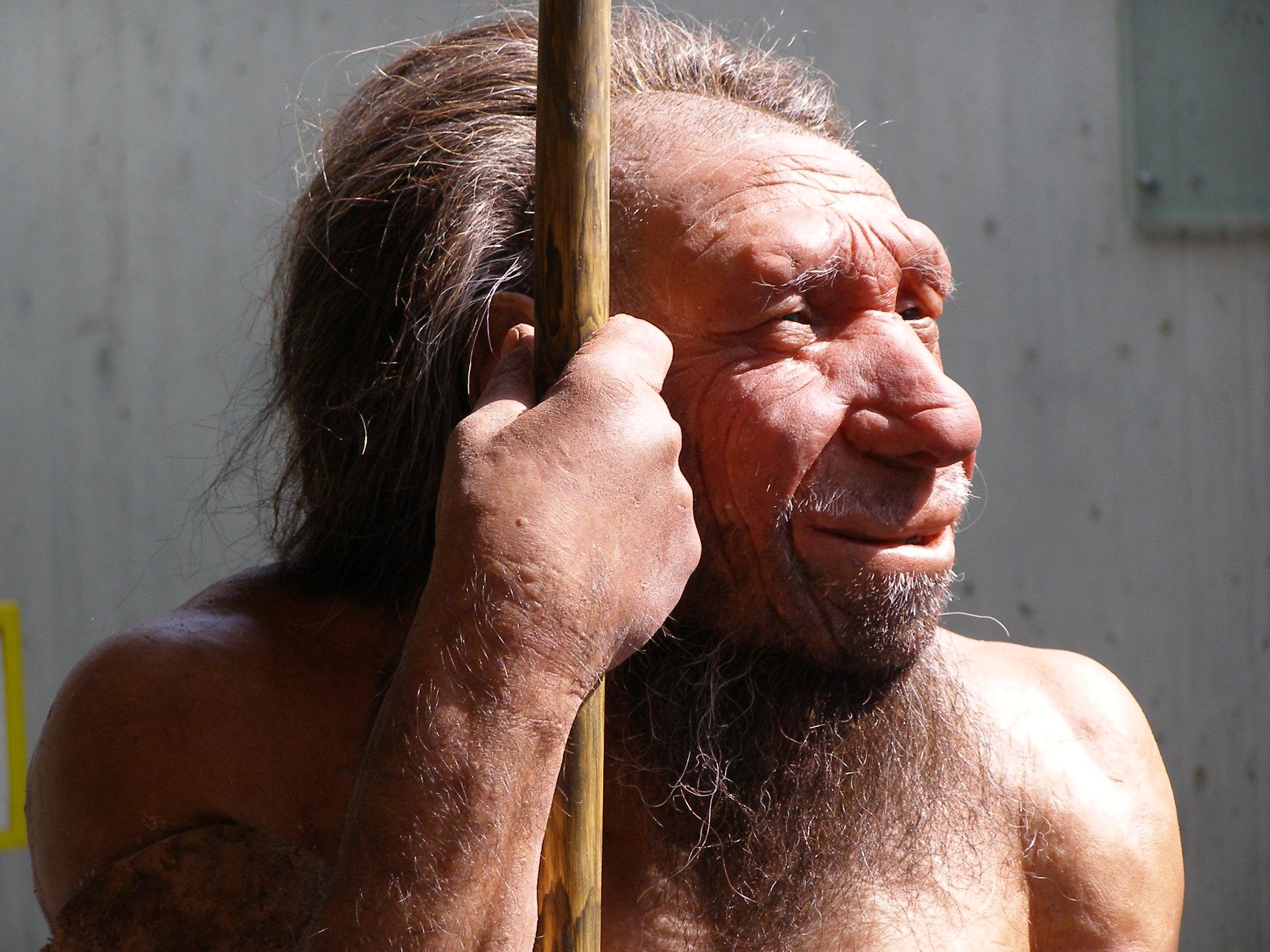 Why weren't Neanderthals autistic?