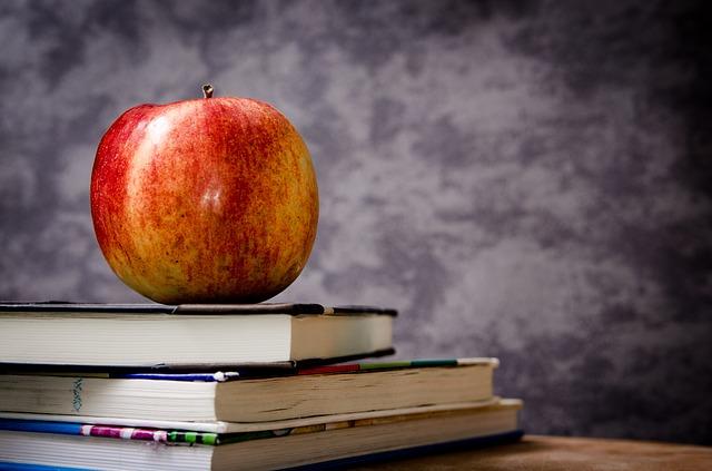 Wilmington and Tewksbury schools share autism awareness