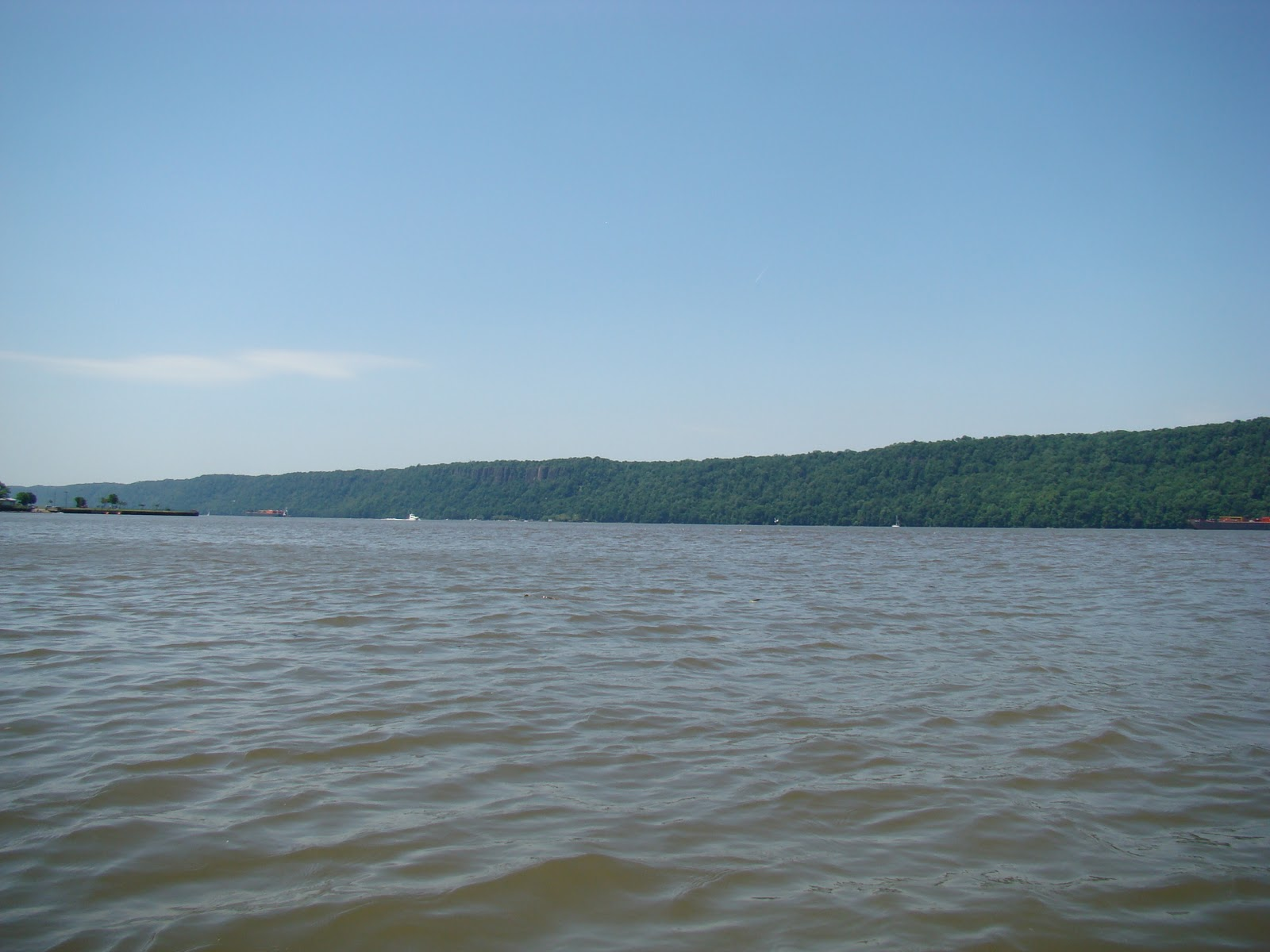 Man Drowns in Hudson River Trying to Save 6 Year Old Autistic Boy