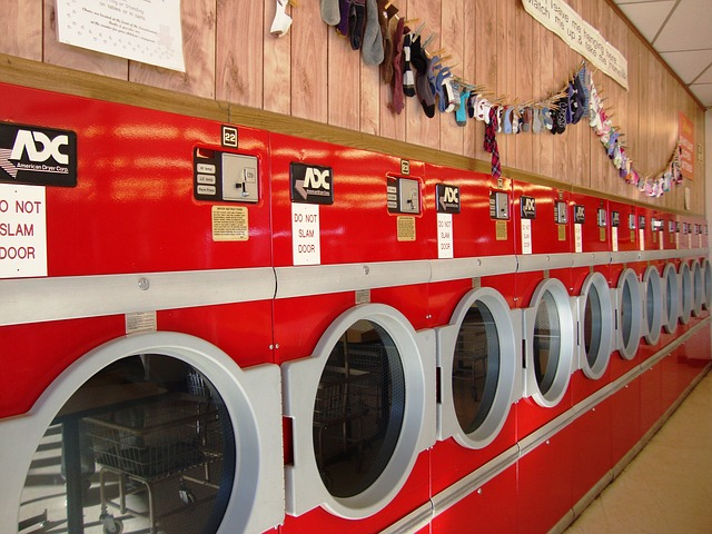 Laundry service provides jobs for adults with Autism Spectrum Disorder