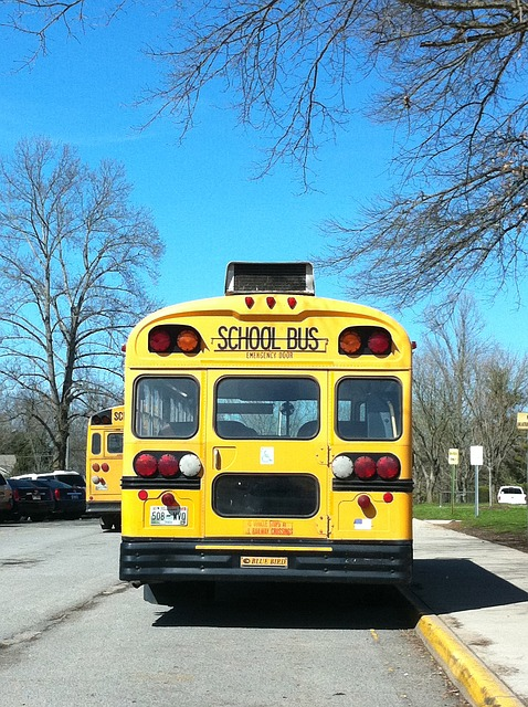 Lawyers accuse boy with autism of instigating fight after he was beaten in a school bus