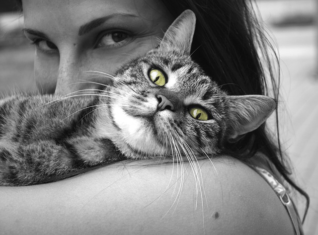 The Positive Traits of Autism – Part 10 – Strong Bonds with Animals