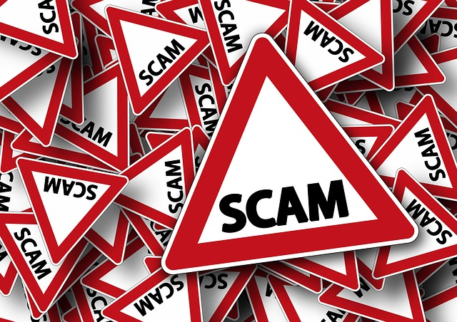 Woman victim of Internet  autism service dog scam