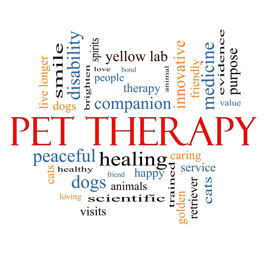 Pet Therapy and Service Dogs for Autism