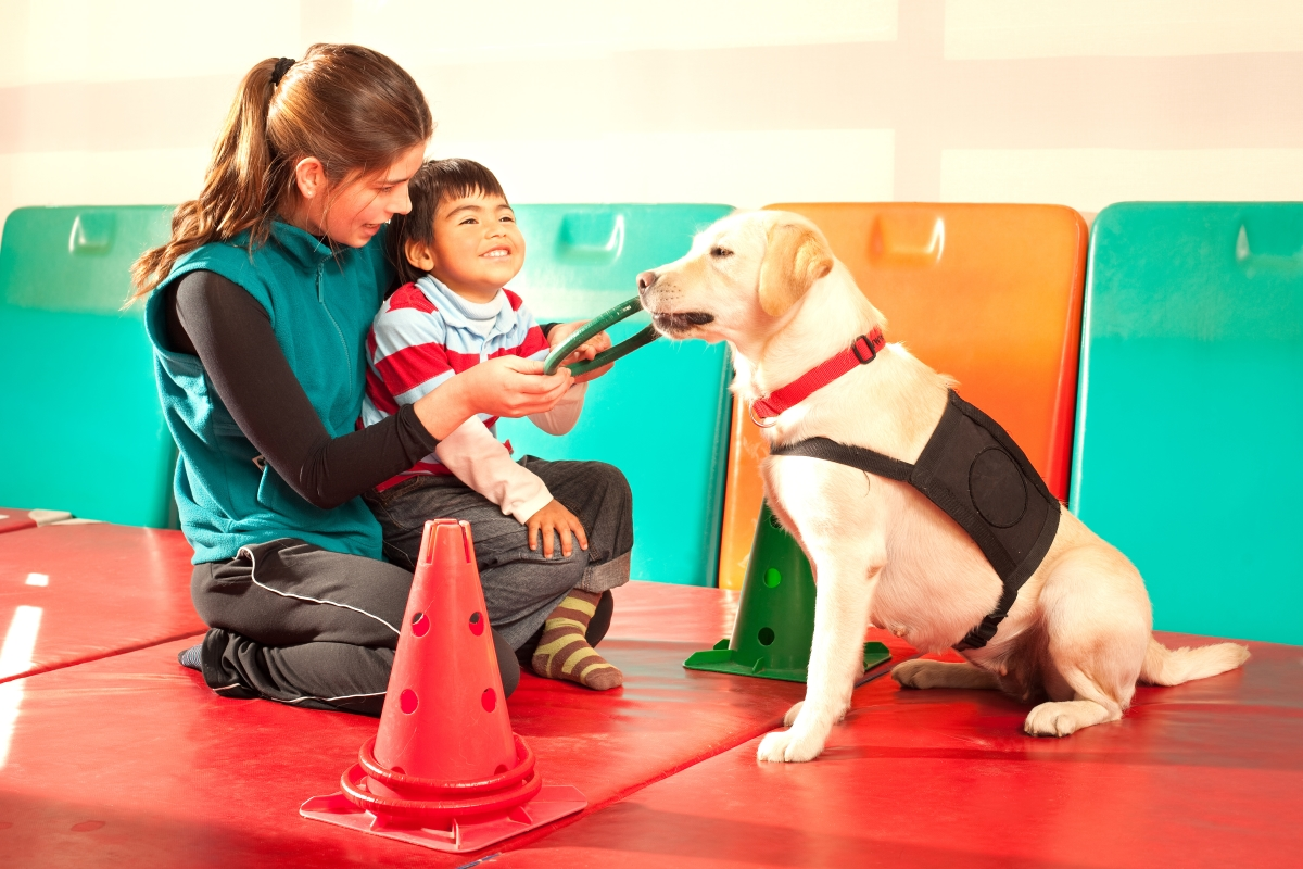 Assistance Dogs Australia provides furry therapists for children with autism