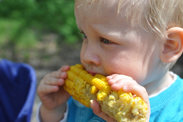 Press Release – Is dietary supplementation appropriate for children with autism spectrum disorder?