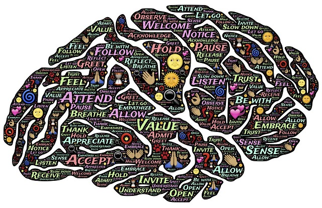 Language Processing and Autism – How wrong I was