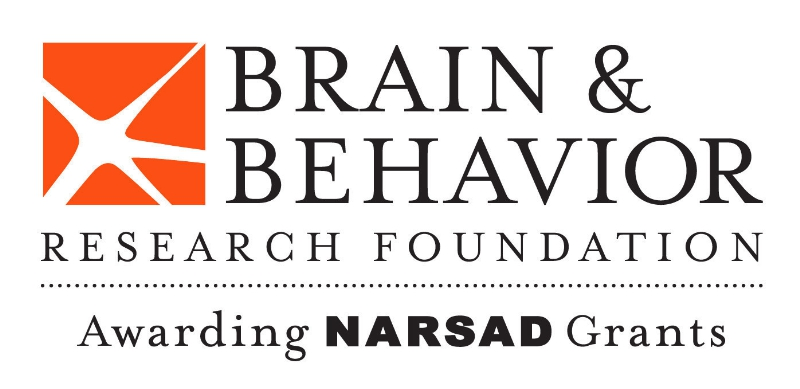 Press Release – Brain & Behavior Research Foundation Awards NARSAD Young Investigator Grants Valued Over $13 Million to 191 Scientists Pursuing Innovative Mental Health Research