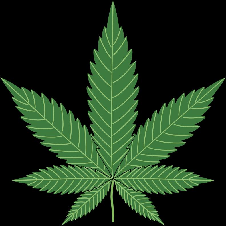 Illinois state panel wants to add autism, pain, PTSD to medical marijuana list